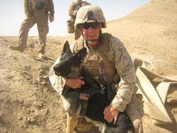 Major w 1 dog